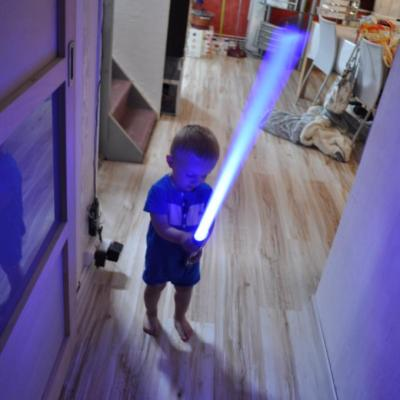 Saber testing by Theo (2 years old!)